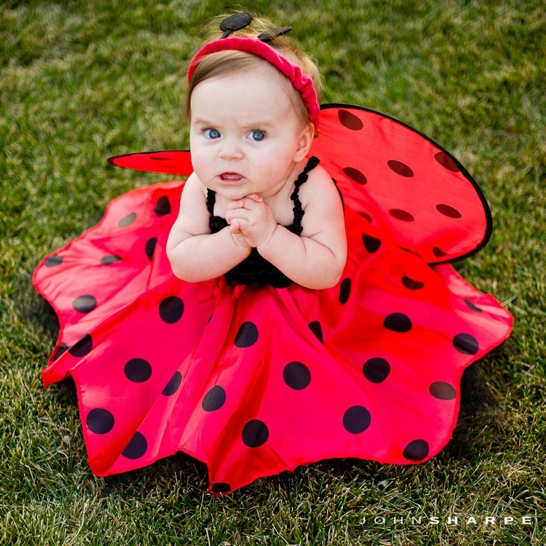 baby-halloween-costumes-next-day-delivery-2